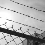 Zarządzenie wykonania kary warunkowo zawieszonej